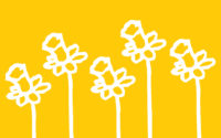 Daffodil Project Doubles in Size on 20th Anniversary of 9/11 to Honor Lives Lost During COVID-19 Pandemic