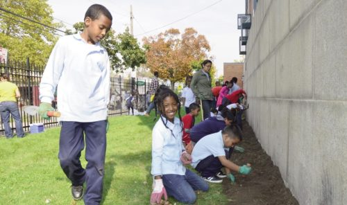 The Daffodil Project teamed up with the students and teachers at PS 104 in 2014, and they have been distributing bulbs in the area annually since 2001.