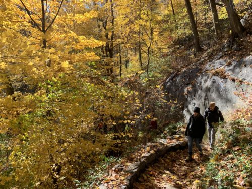 People hiking in Inwood Hill Park, a large park with natural areas and hiking trails at the Northern tip of Manhattan. Picture provided by the Natural Areas Conservancy.