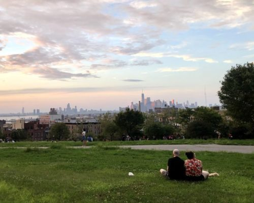 Jeanmarie Evelly | The lawn at Brooklyn's Sunset Park in August 2020
