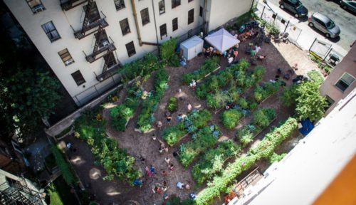 Aerial view of Electric Ladybug Garden in Harlem, Manhattan. Photo by Murray Cox. Retrieved from http://596acres.org