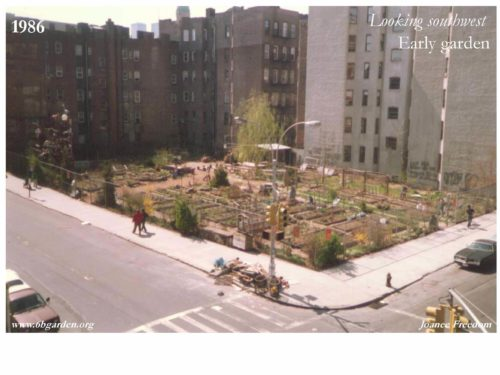 The 6 & B Garden replaced the demolished buildings. Here it is in 1986, a couple years into being established. Photo by Ingrid Dinter. Retrieved from http://6bgarden.org/