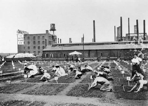 "Children planting seeds at the DeWitt Clinton Park Farm in 1908. Photo retrieved from the NYC Parks Department, ""History of Farm Gardens in NYC Parks."""
