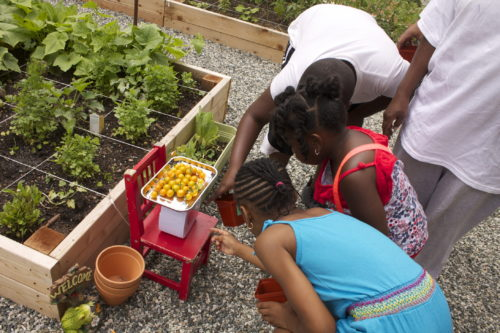 Children weigh vegetable output at the Kelly Street Garden in the Bronx in 2014. Photo provided by Rosalba Lopez Ramirez to Farming Concrete. Retrieved from https://farmingconcrete.org/