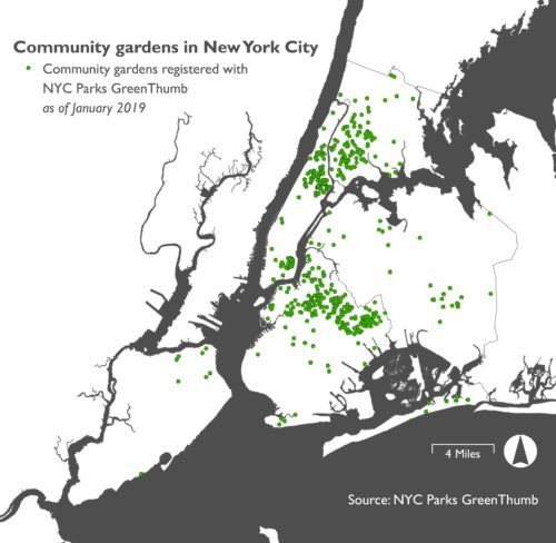 Map of New York City community gardens registered with GreenThumb as of January 2019. Made by Jessica Saab for NY4P.