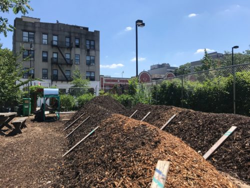 The compost windrows at the Know Waste Lands Community Garden in Bushwick, Brooklyn. Organic waste spends 10 to 12 weeks in these mounds until it's all broken down into organic matter. Photo by Jessica Saab for NY4P.