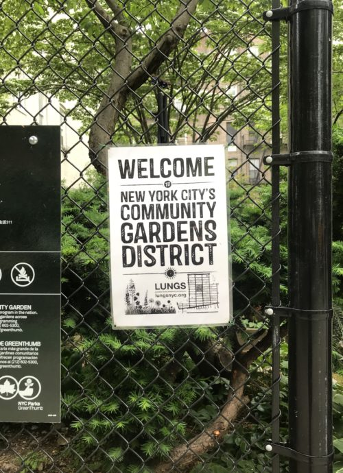 The LUNGS Community Gardens District sign printed, laminated, and affixed to a community garden's fence in Manhattan's Lower East Side. Photo by Jessica Saab for NY4P.