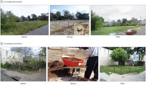 "Before, During, and After photos of the vacant lots that were greened for a study on the effects of vacant lots on mental health in Philadelphia, Pennsylvania. Original caption: ""Vacant Lot Main Greening Intervention Images show blighted preperiod conditions and remediated postperiod restorations. A, The image shows the grass seeding method used to rapidly complete the treatment process. B, The after image shows the low wooden perimeter fence. Vacant lots shown here are representative of those in the study, although for purposes of confidentiality are not actual study lots."" Retrieved from https://jamanetwork.com/journals/jamanetworkopen/fullarticle/2688343"