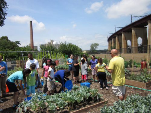 Children visiting the Randall's Island Urban Farm, on Randall's Island off the coast of Manhattan and Queens. Retrieved from https://www.grownyc.org