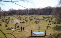 NY4P in Gothamist: How Will The Next Mayor Invest In City Parks?