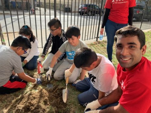 Volunteers from Delta Airlines planting daffodils with students